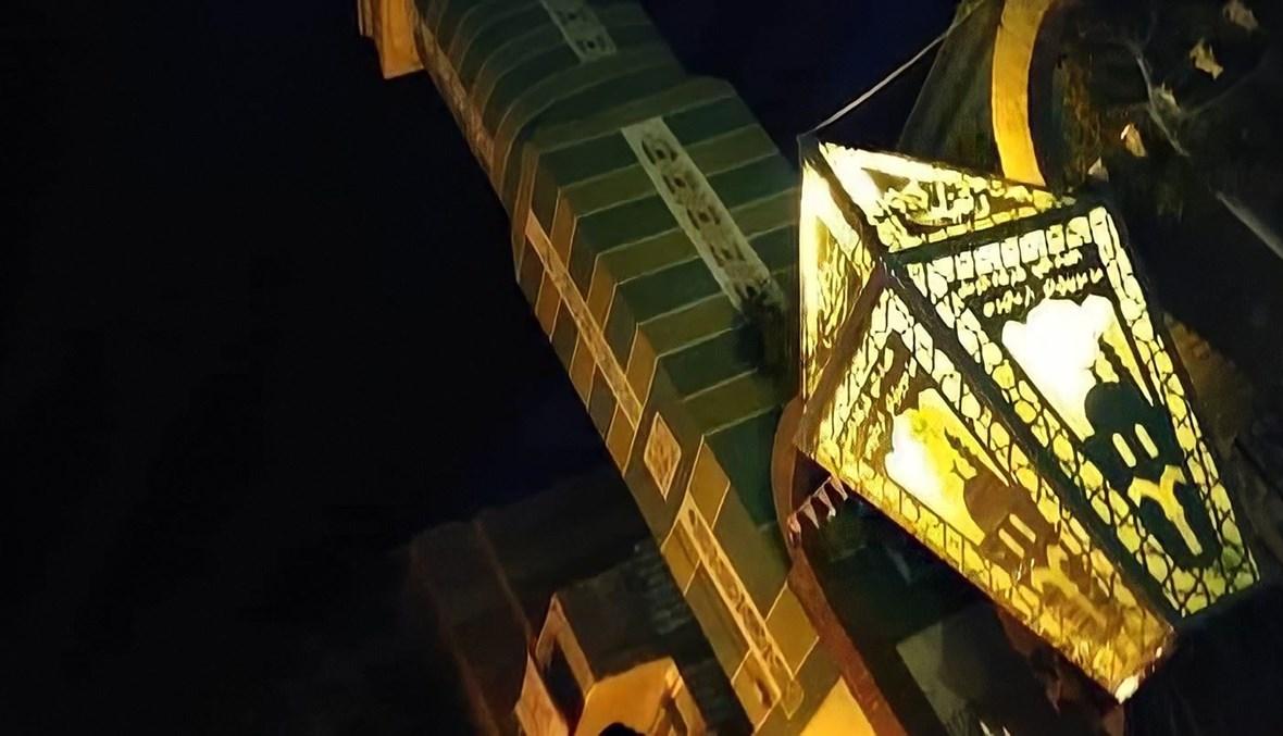 أكبر فنوس مصري.