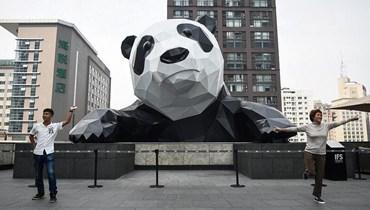 بالصور: تعرف إلى الباندا العملاقة المتسلقة في الصين