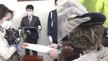 قطة تتحول الى شرطية بعد إنقاذها مسنّاً