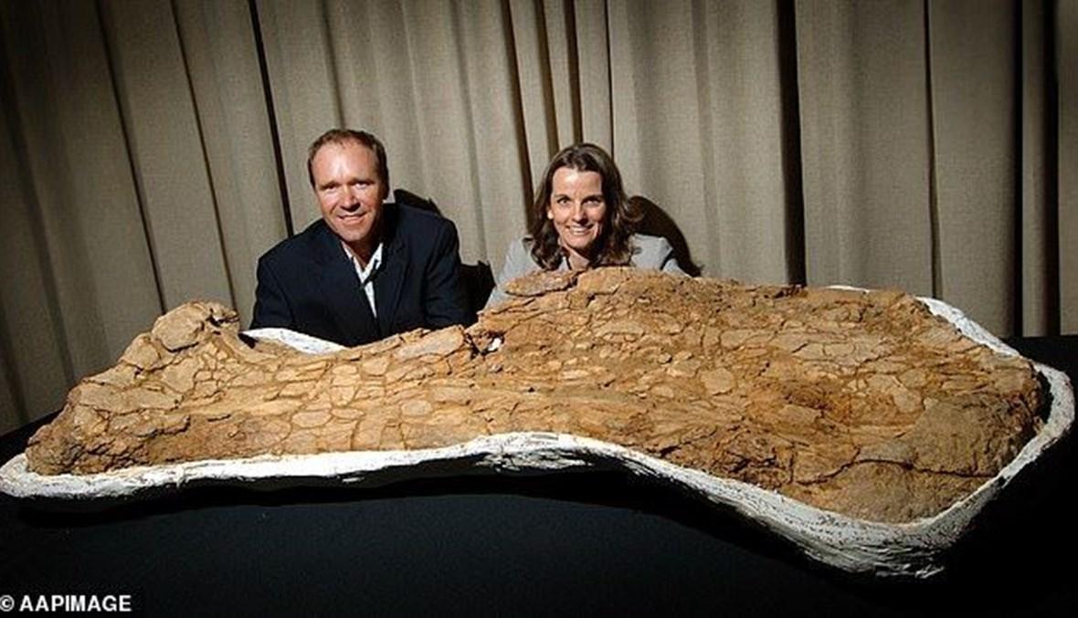 اكتشاف واحدة من أكبر فصائل الديناصورات بالعالم.