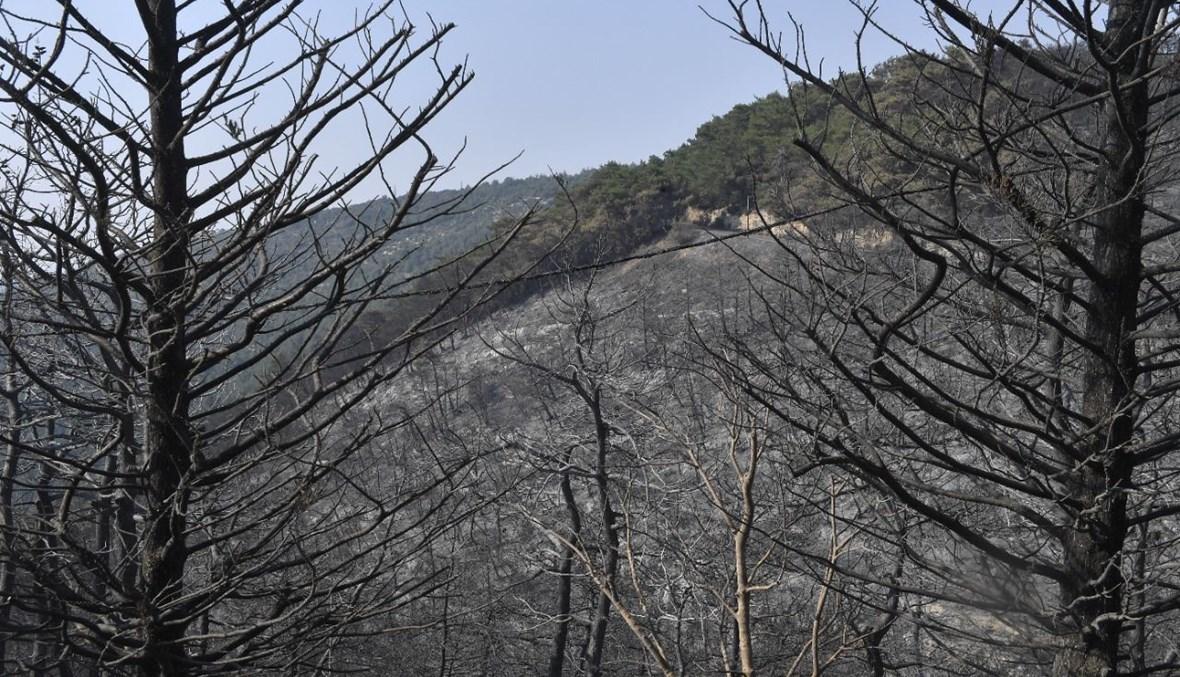 """لبنان يحترق من قلب عكار (تعبيرية- """"النهار"""")."""