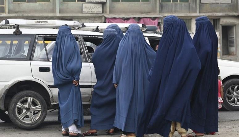 طالبان تنقل المواجهات إلى أطراف هرات وتخوض معارك عنيفة في محيط قندهار