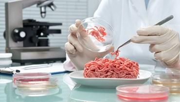 بكتيريا الإشريكية القولونية والسالمونيلا والليستيريا في طعامنا... نأكل فساداً!
