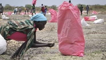 امرأة تلتقط حبوب الذرة بعد القاء برنامج الأغذية العالمي مساعدات جوا في بلدة كانداك جنوب السودان (2 ايار 2018، أ ب).