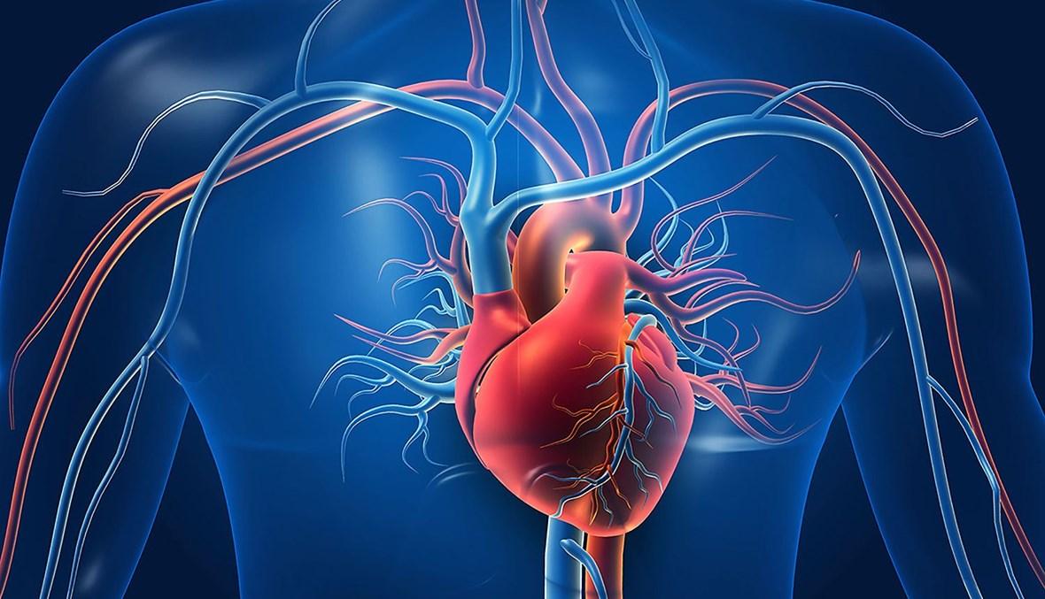 أمراض القلب (تعبيرية).
