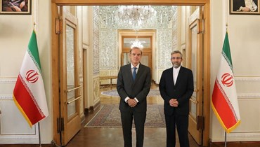باقري (إلى اليمين) مستقبلا مورا في طهران (14 ت1 2021، أ ف ب).