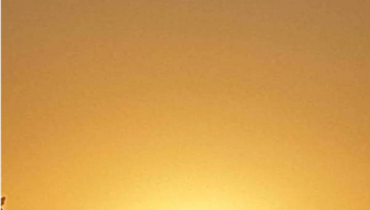 دعوة إلى حفلة احتلام الشمس وقهوتها