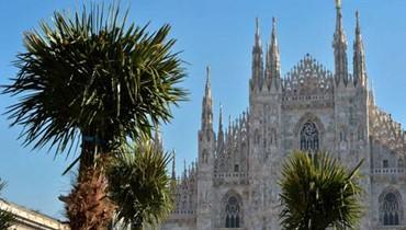 شجر النخيل في ساحة كاتدرائية ميلانو يشعل جدلاً حول استيراده في إيطاليا
