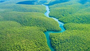 وفاة الرسام والنحات البرازيلي فرانز كرايسبرغ المدافع عن الغابة الامازونية