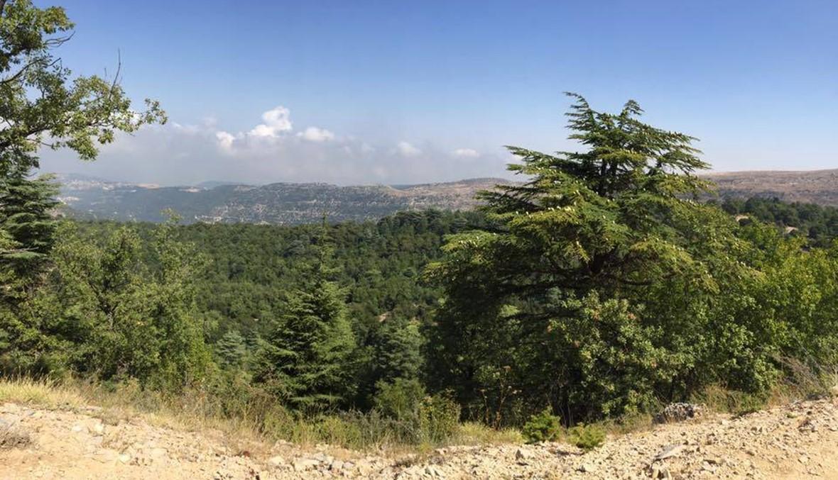 المشي في الطبيعة رياضة في عز كانون