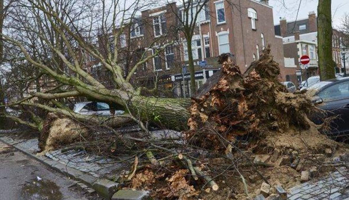 """بالفيديو- العاصفة """"فريديركا"""" تضرب هولندا وتسبّب دماراً...اقتلعت الأشجار وطار المارّة وأسقف المنازل!"""