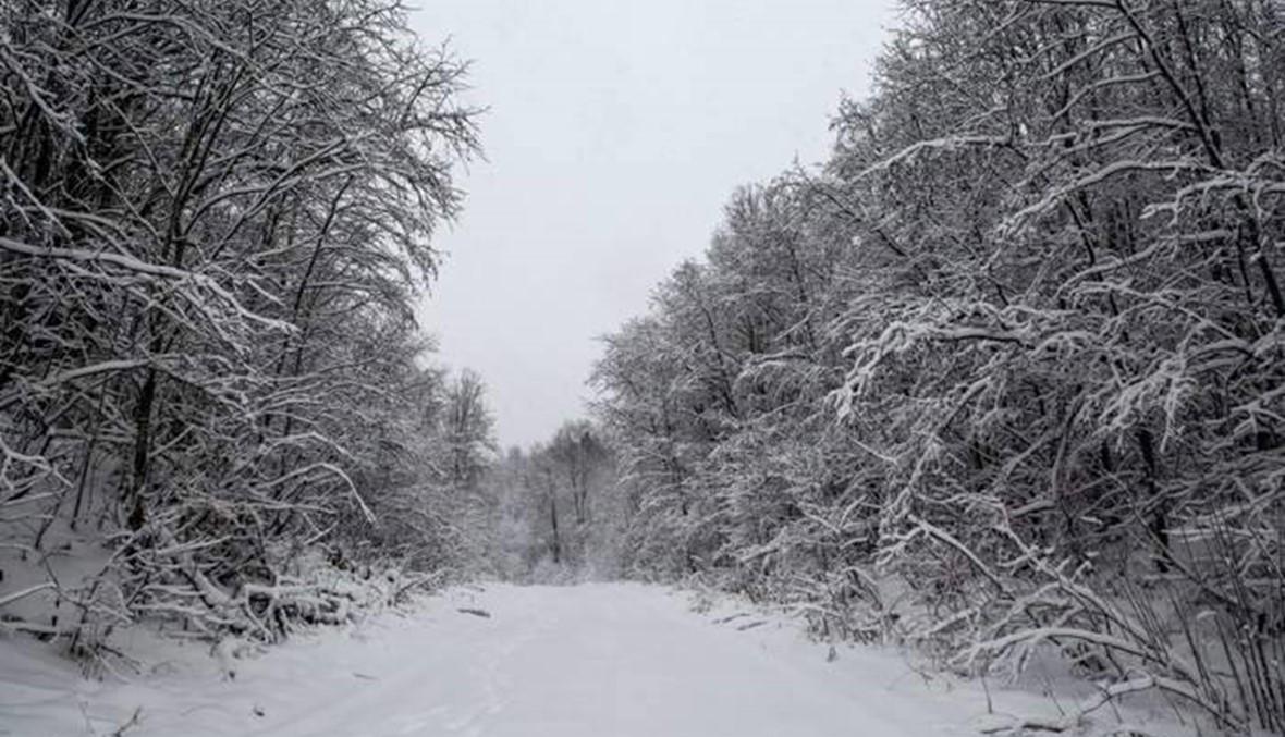 انقاذ 7 مواطنين علقوا وسط الثلوج في جرود الضنية