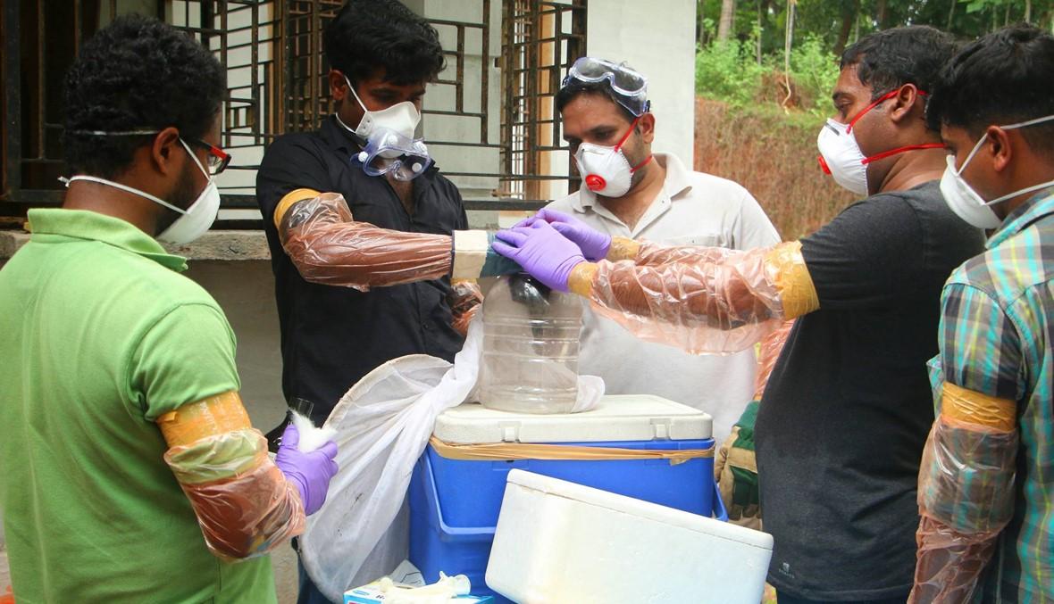 فيروس نادر يتفشّى في الهند... وفاة عشرة، وخشية من خفافيش الفاكهة