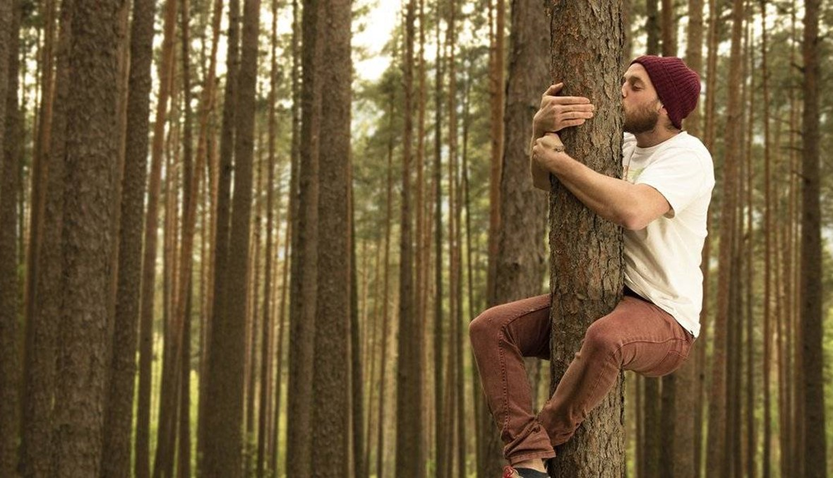 عانقوا الأشجار، تصحّوا!