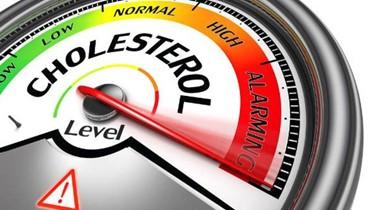 عوامل تساهم في رفع الكولسترول الجيد في الجسم