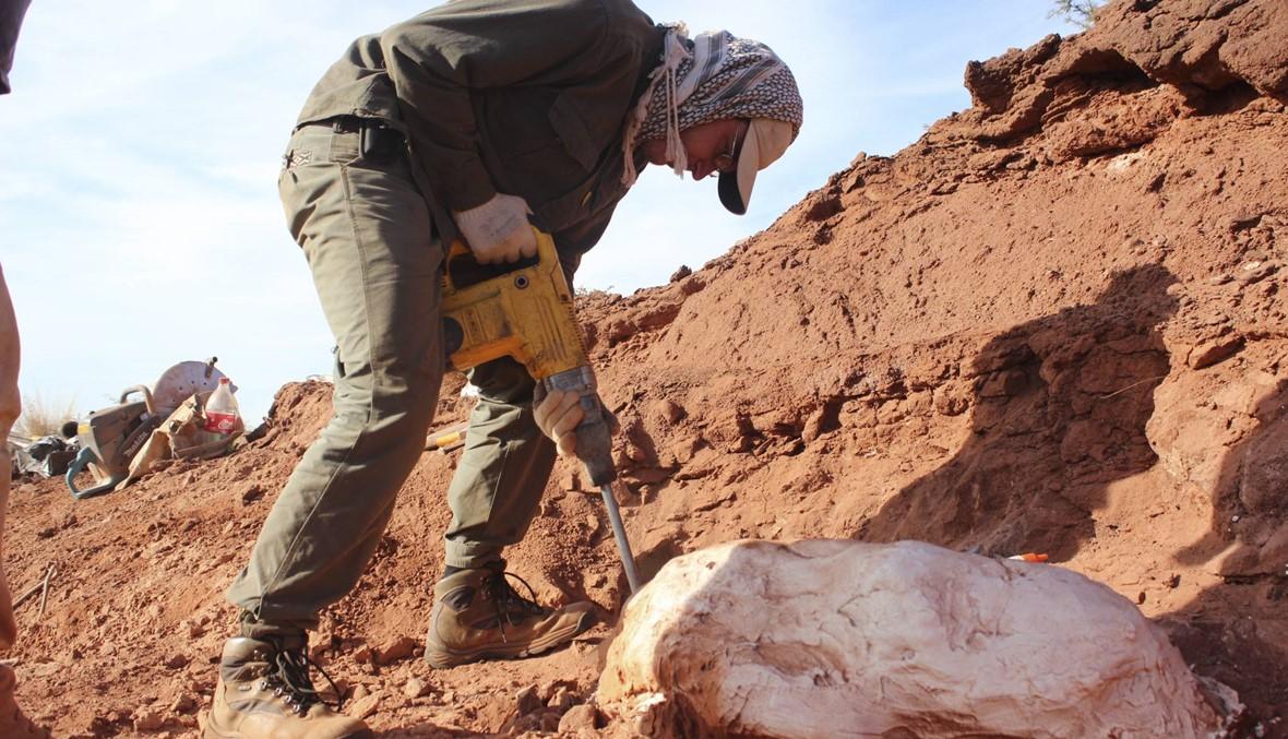 متحجّرات في الأرجنتين: الديناصور العملاق عاش قبل 200 مليون سنة