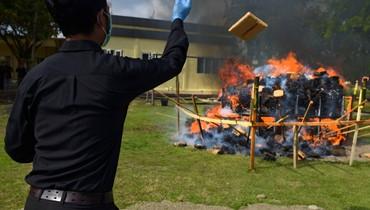 موقوفون عاينوا المشهد بلباس برتقالي... الشرطة الإندونيسية تحرق 800 كيلغ من الماريجوانا