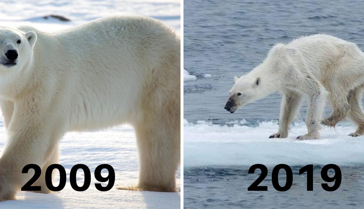 """""""تحدّي الـ10 أعوام"""" وتحذير ممَا يحدث لكوكبنا... """"هذا هو التحدّي الذي يجب التركيز عليه"""" (صور)"""