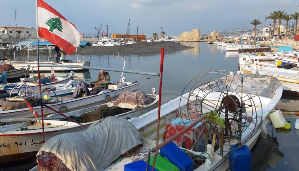 """انتخابات نقابة صيدا للأسماك: فوز """"لائحة التوافق"""" بكامل أعضائها"""