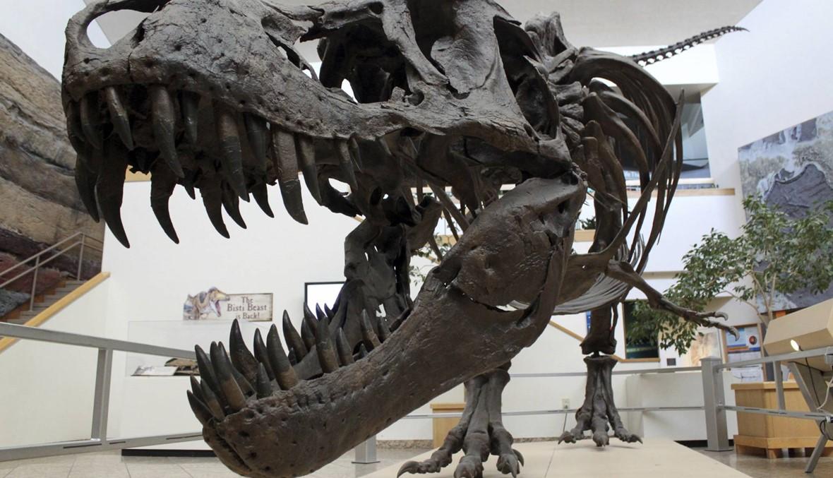 اكتشاف علميّ نادر... متحجرات لأسماك وديناصورات نفقت قبل 66 مليون سنة