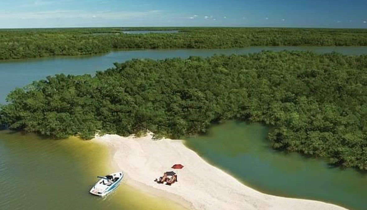 عالم من الخيال... عوامل تدفعك للتمسُّك بزيارة ساحل فلوريدا