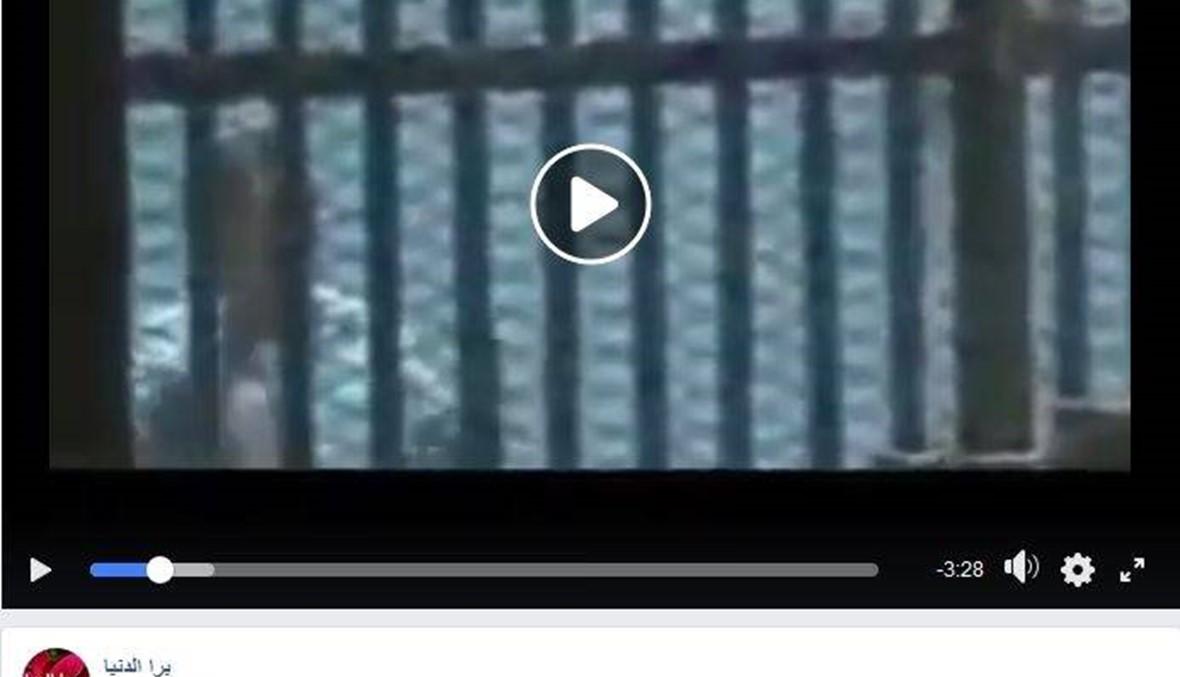فيديو اللحظات الأخيرة لمحمد مرسي خلال محاكمته؟ FactCheck#