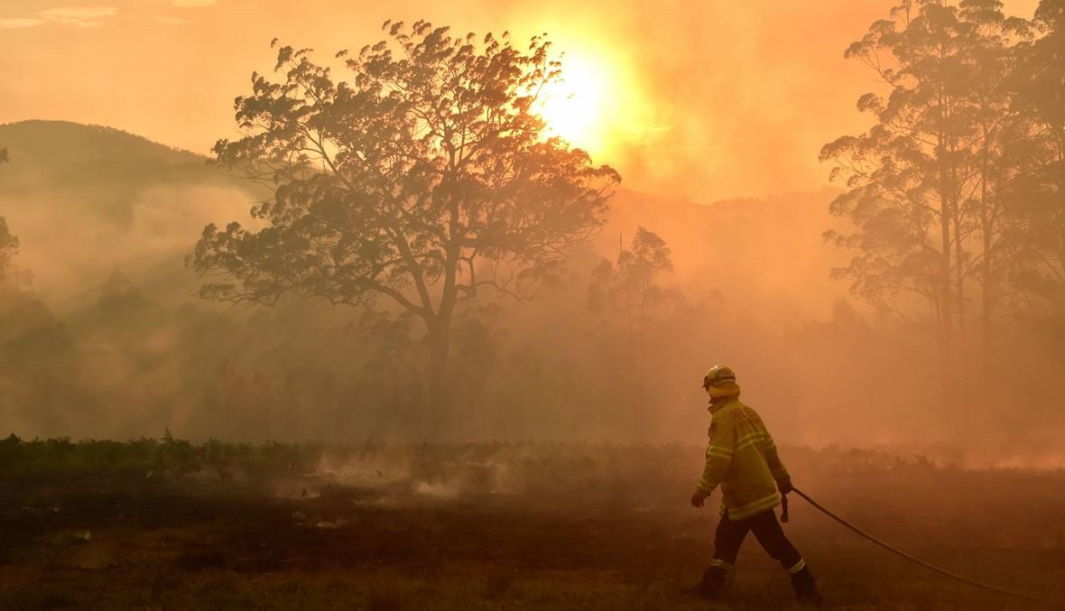 حرائق الغابات في أوستراليا تصل ضواحي سيدني