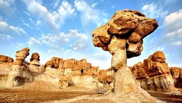 الإحساء... واحة نخيل بين رمال وجبال وبحر وقارة جوهرتها