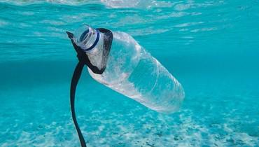 الإنسان يستهلك ما حجمه بطاقة ائتمان من البلاستيك أسبوعياً