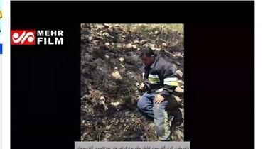 """""""صمود الأم في وجه النار في جرود الهرمل""""؟ إليكم الحقيقة FactCheck#"""