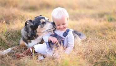 دراسة : معادلة جديدة لمقارنة سن الكلاب بأعمار البشر