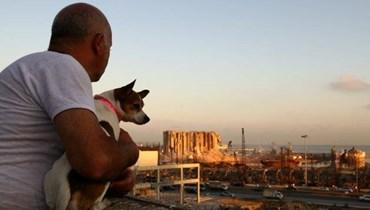فيديو مؤثر يوثق لحظة عثور الأشخاص على حيواناتهم الأليفة عقب انفجار بيروت