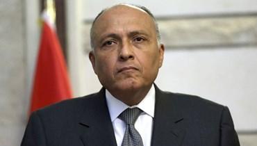 وصول وزير الخارجية المصرية زار جنبلاط
