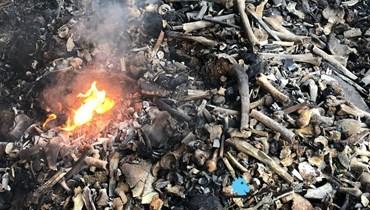 بالصور والفيديو: ما أهمية العظام الأثرية التي حرقت بالأمس في رياض الصلح؟