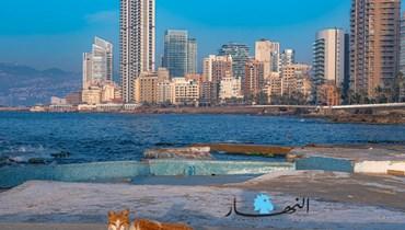 لبنان من الاقتصاد الريعيّ إلى المنتج... شرطان داخلي وخارجي لتحقيق النموّ