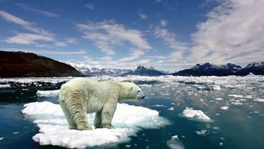 تهديد عالمي جديد... ذوبان الجليد يفتح صندوق الفيروسات