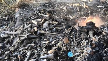 العظام المحروقة تعود إلى الفتوحات الإسلامية الأولى... شكوى ونقل الرفات إلى مكان آمن (صور وفيديو)