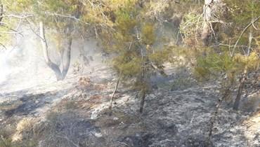 حريق بحرج دير مار سركيس في بينو- عكار