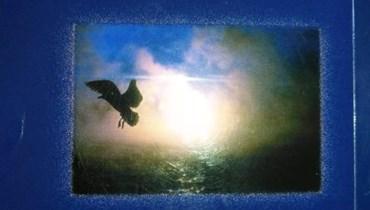 """""""طائر غريب"""" لسوزان عكاري: فضاء ليس أرحم من أحشاء الأمّ"""