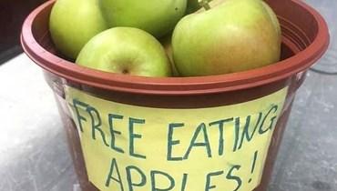 فرض غرامة على بريطانية لوضعها سلّة تفاح أمام منزلها