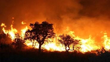 حرائق غابات في الجزائر تودي بحياة شخصين... حاصرتهما النيران في قن للدجاج
