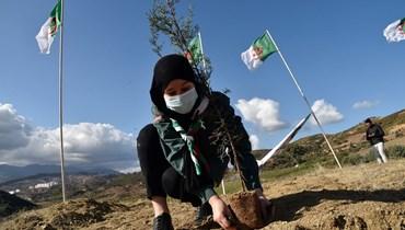 الجزائر: 190 عاملاً صحيًّا قضوا بكورونا وإصابة 9146 آخرين