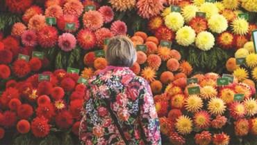 كوفيد-19 يهدد صناعة الزهور ومستقبلها...